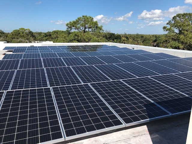 Let the Sunshine In! Conservancy of Southwest Florida Adds Solar Capacity